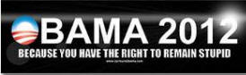 Obama 2012 - Because you have the right to remain stupid!