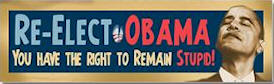 Re-elect Obama - You Have The Right To Remain Stupid