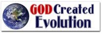 God Created Evolution Sticker (Bumper)