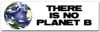 No Planet B Sticker (Bumper)